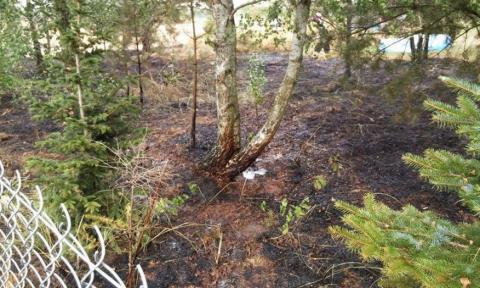 Niebezpieczne Zaprószenie Ognia Artykuł Z Portalu życie Pabianic